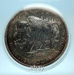 2013 CANADA UK Queen Elizabeth II Bison 1 OZ Genuine Silver $5 Coin i77545