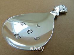 Rare Mappin & Webb Queen Elizabeth Silver Jubilee Caddy Spoon 1977